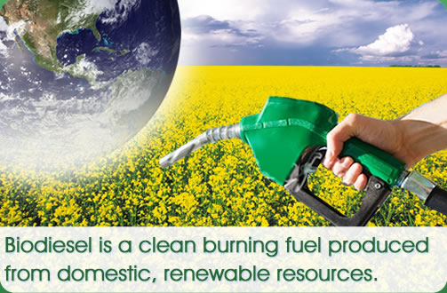 biodiesel fuel With gasoline prices volatile and the obama administration committed to easing the united states' addiction to oil, americans seem to be taking more interest in alternative fuels, including those derived from farm crops and other renewable organic sources among the most widely available are biodiesel and vegetable oil,.