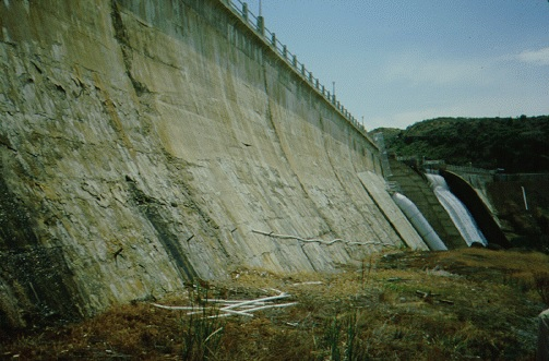 Freezing and thawing deterioration to the downstream face of this dam