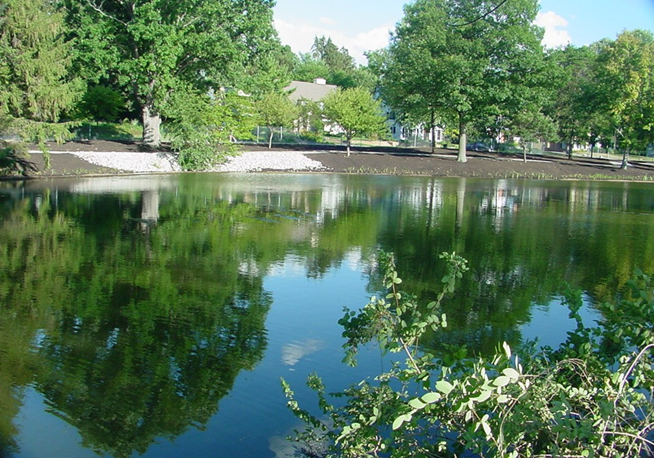 Lake restoration