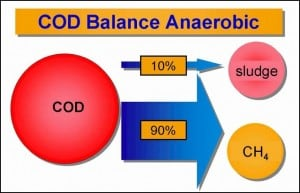 COD Balance Anaerobic Biodegradation