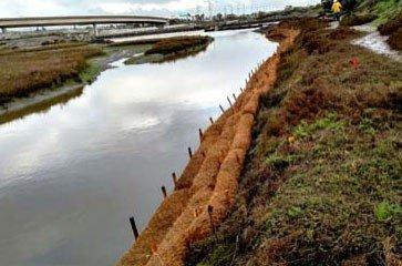 Coir logs for River Bank Erosion control
